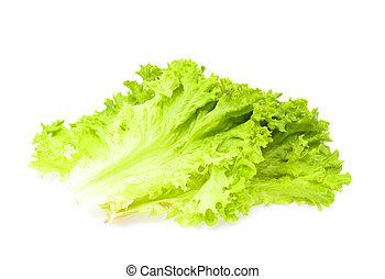 Lettuce isolated on white background