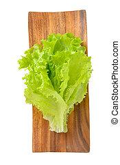 lettuce leaf on a white background
