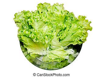 Lettuce leaf
