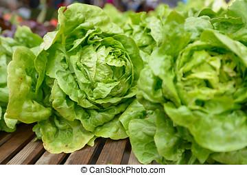 Lettuce - New lettuce on a farmer's market