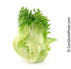 lettuce on white background