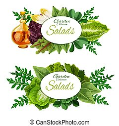 Lettuce salad and spinach leaves. Vegetable food - Leafy...