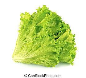 Lettuce salad isolated on white background .Salad leafs