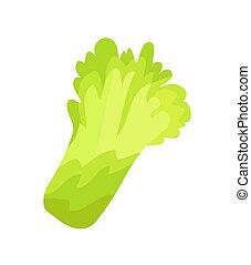Lettuce Salad Organic Garbage Vector Illustration - Lettuce...