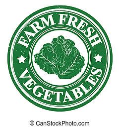 Lettuce stamp - Lettuce vegetable grunge rubber stamp or...