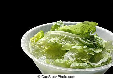 lettuce in a  bowl on black background