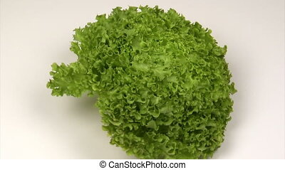 Lettuce zoom in - Green lettuce on a rotating platform