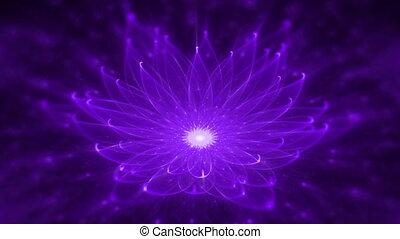 leuchtend, lotos