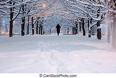 leute, gehen, a, winter, park, mit, schnee, in, sonnenuntergang