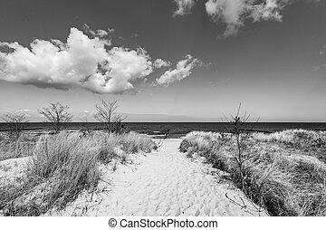 levée, mer, sentier, baltique, plage, sablonneux