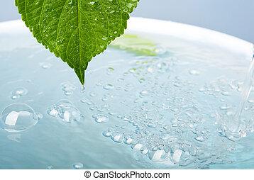 levél növényen, fürdőkád, wellness, fogalom