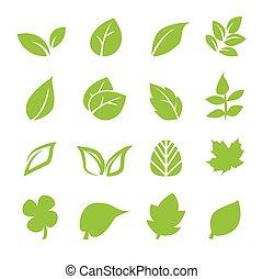 levél növényen, ikon