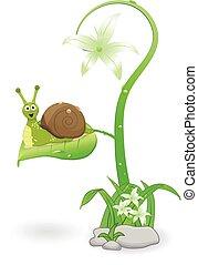 levél növényen, karikatúra, csiga