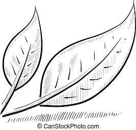 levél növényen, skicc