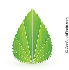 levél növényen, természet, concept., elvont, vektor, jelkép