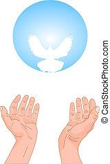 levantado, adoração, elogio, mãos