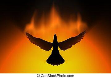 levantar, phoenix