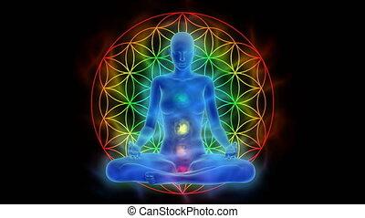 leven, bloem, activering, symbool, verstand, meditatie, chakra, aura, enlightenment