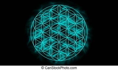 leven, bloem, aura