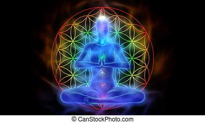 leven, bloem, yoga, symbool, meditatie