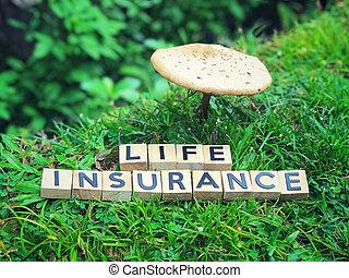 leven, concept., verzekering