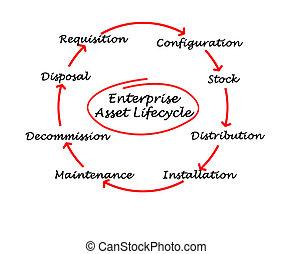 leven, onderneming, aanwinst, cyclus