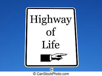 leven, snelweg