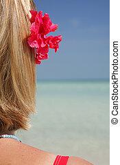leven, strand, (beach)
