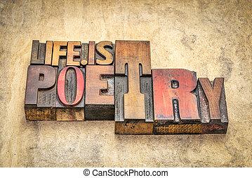 leven, tekst, -, poëzie, hout, type