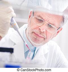 leven, wetenschapper, laboratory., het onderzoeken