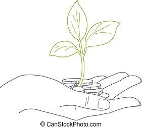 lever, concept, femme, fin, pièces, investissement, main, plante