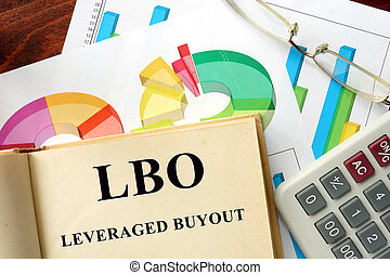 leveraged, -, buyout, lbo