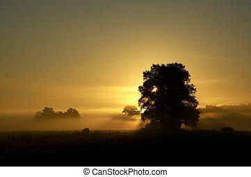 levers de soleil, 1