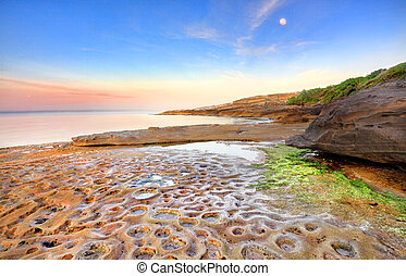levers de soleil, australie, botanique, baie