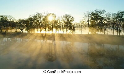 levers de soleil, brumeux, sur, parc, ruelle, lac