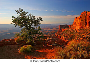 levers de soleil, dans, canyonlands