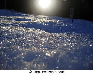 levers de soleil, dans, les, hiver, forêt, par, commencement matin