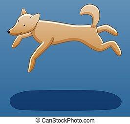 Levitating dog on a blue background