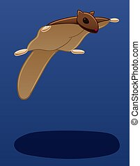 Levitating flying squirrel on a blue background