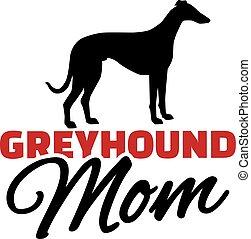 levriero, silhouette, cane, mamma