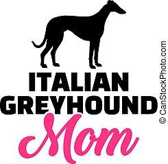 levriero, silhouette, mamma, italiano