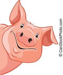 lewa strona, świnia, peeking na zewnątrz