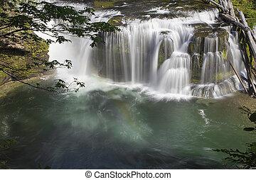lewis, inférieur, rivière, chutes, vue