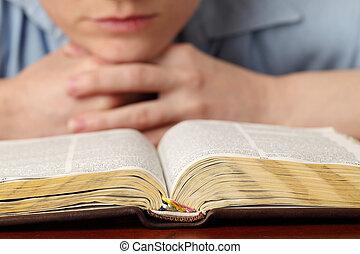 lezende , de, bijbel