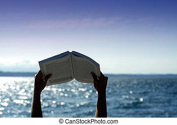 lezende , op het strand