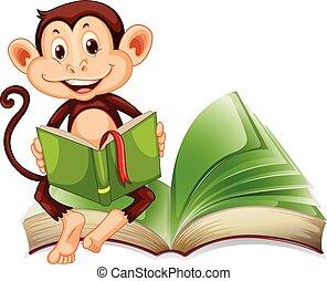 lezende , weinig; niet zo(veel), boek, aap, zittende
