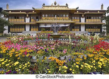 lhasa, verano, -, palacio, tibet