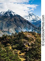 Lhotse, Lhotse shar peaks village and forest in Himalayas. ...