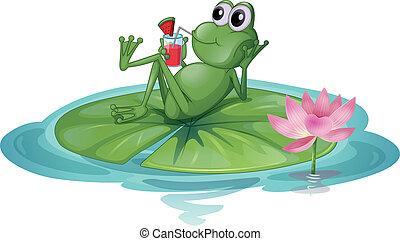 liść, żaba, odprężając