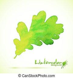 liść, barwiony, dąb, akwarela, wektor, zielony